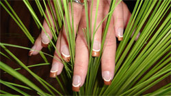 10142_naildesign5.jpg